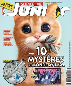 Science & Vie Junior |
