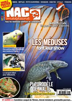 NAC magazine |