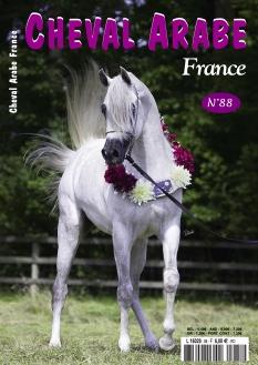 Cheval Arabe France |