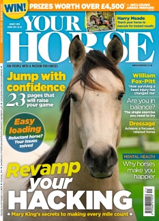 Your Horse